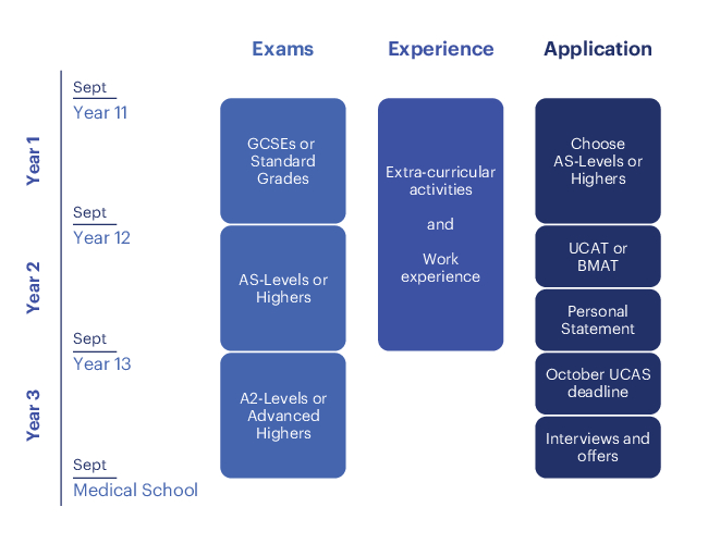 Medical school application timeline