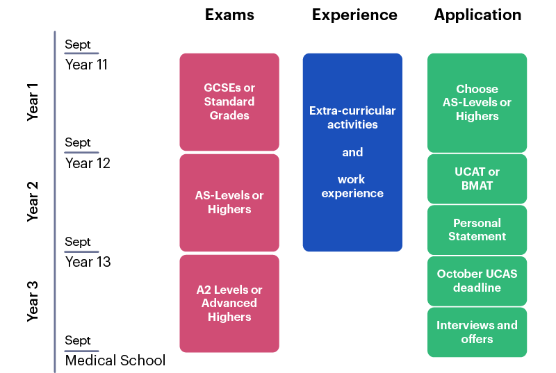 A roadmap outlining preparation for admission to medicine from year 11 to 13.