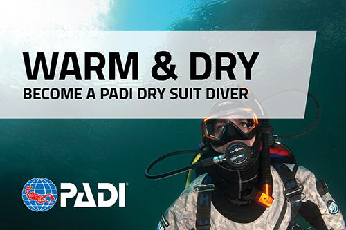 Dry suit diver