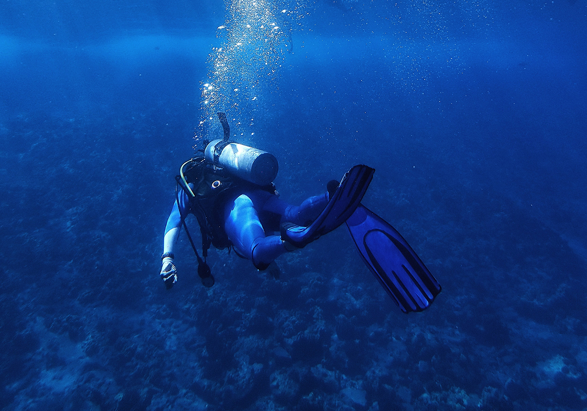 Online PADI theory courses