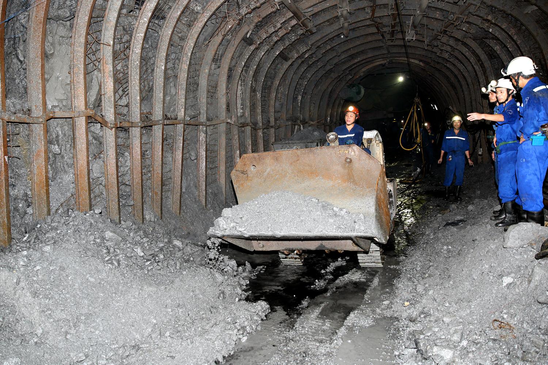 nhu cầu về các loại than
