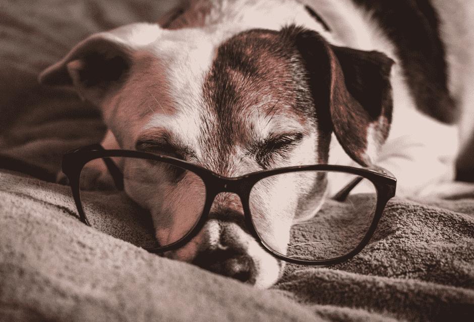 Søvn og hvile er avgjørende for gode prestasjoner på jobben!