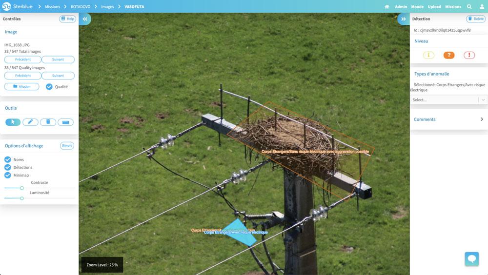 在Sterb的配电线路上发现鹳鸟巢。