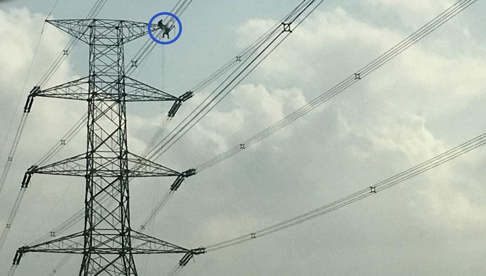 Technicians operating on a 75m pylon
