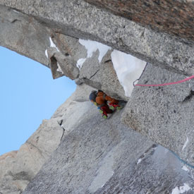 Mark Thomas leading up Pitch 4