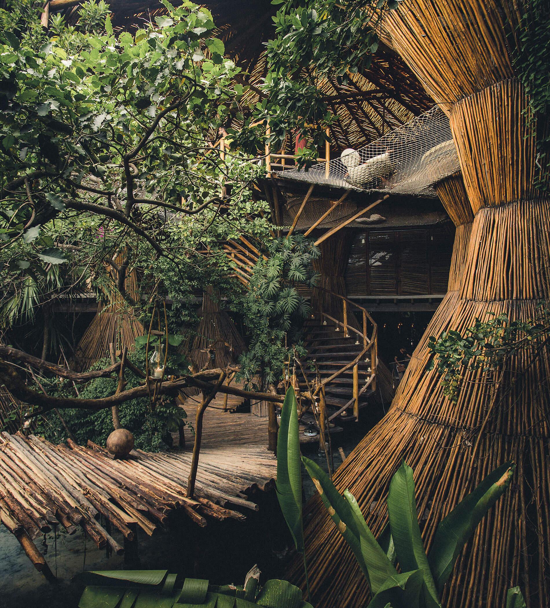 azulik-kintoh-nests