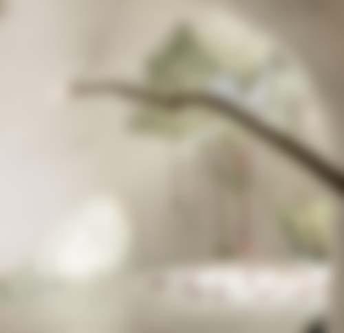 azulik-skerik