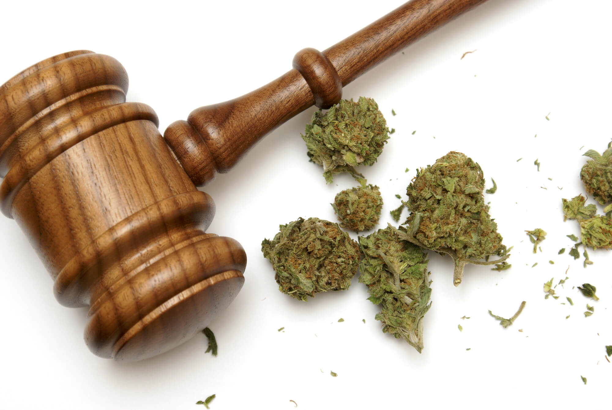 Where can I find a Marijuana Lawyer West Palm Beach?