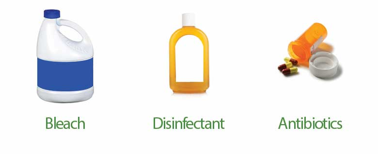 items that ruin your septic system Bleach Disinfectant Antibiotics