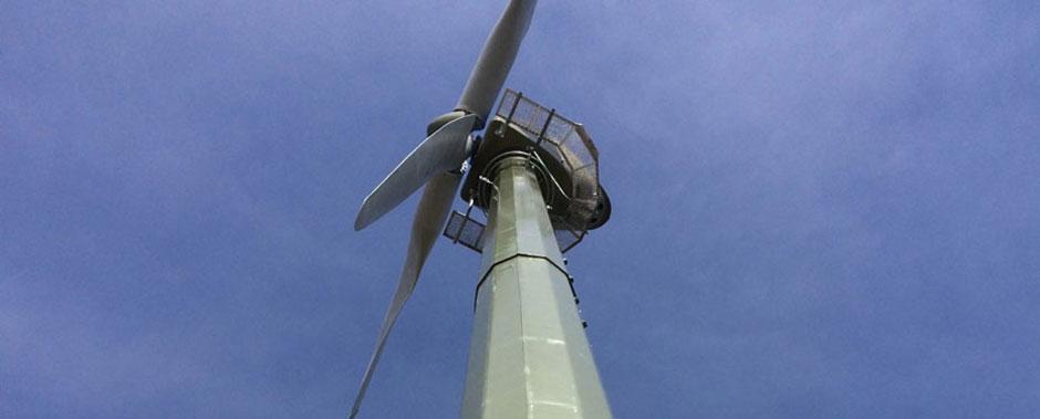 Wind turbine at Godlingston Manor