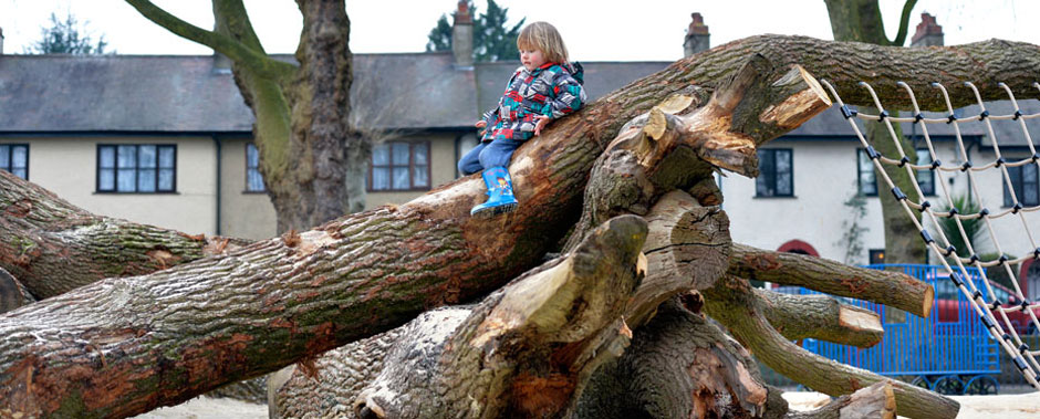 Use of trees at Millfields Park Play Space