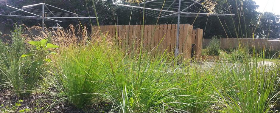 Planting at Sovereign Housing Association garden