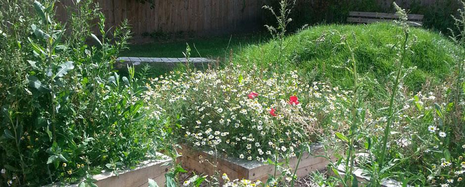 Planting in Sovereign Housing Association garden