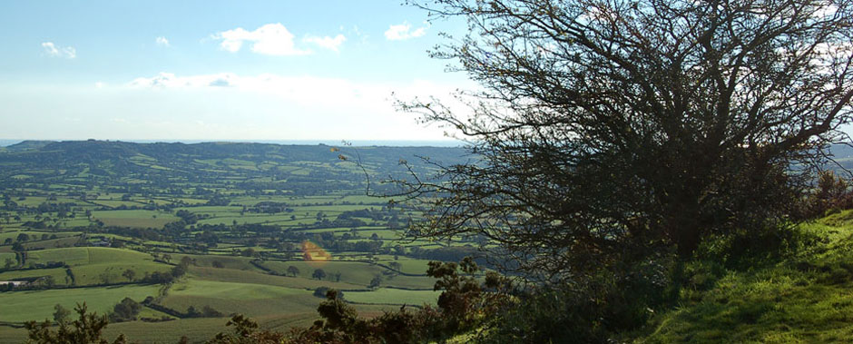 Highlands Farm LVIA