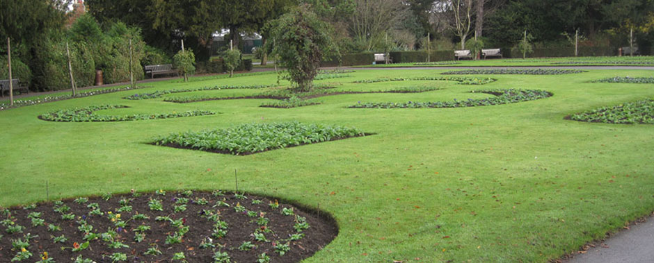 Flower beds at Abbey Gardens