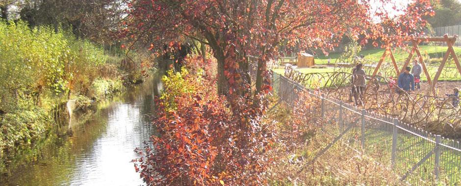Stream at Abbey Gardens