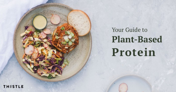 your guide to plant-based protein