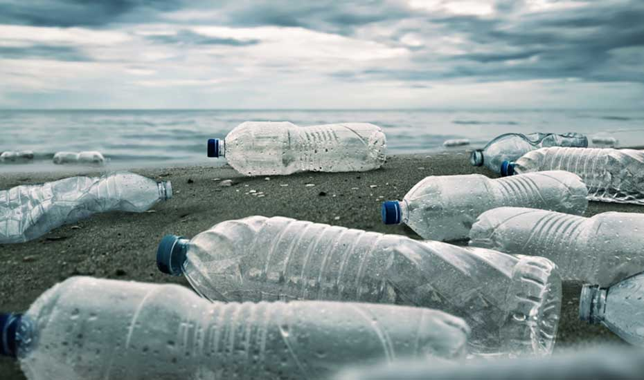 The impact of plastic water bottles
