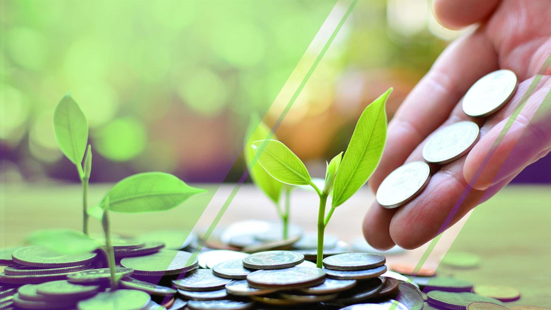 Las 5 inversiones más seguras que puedes hacer en tu vida