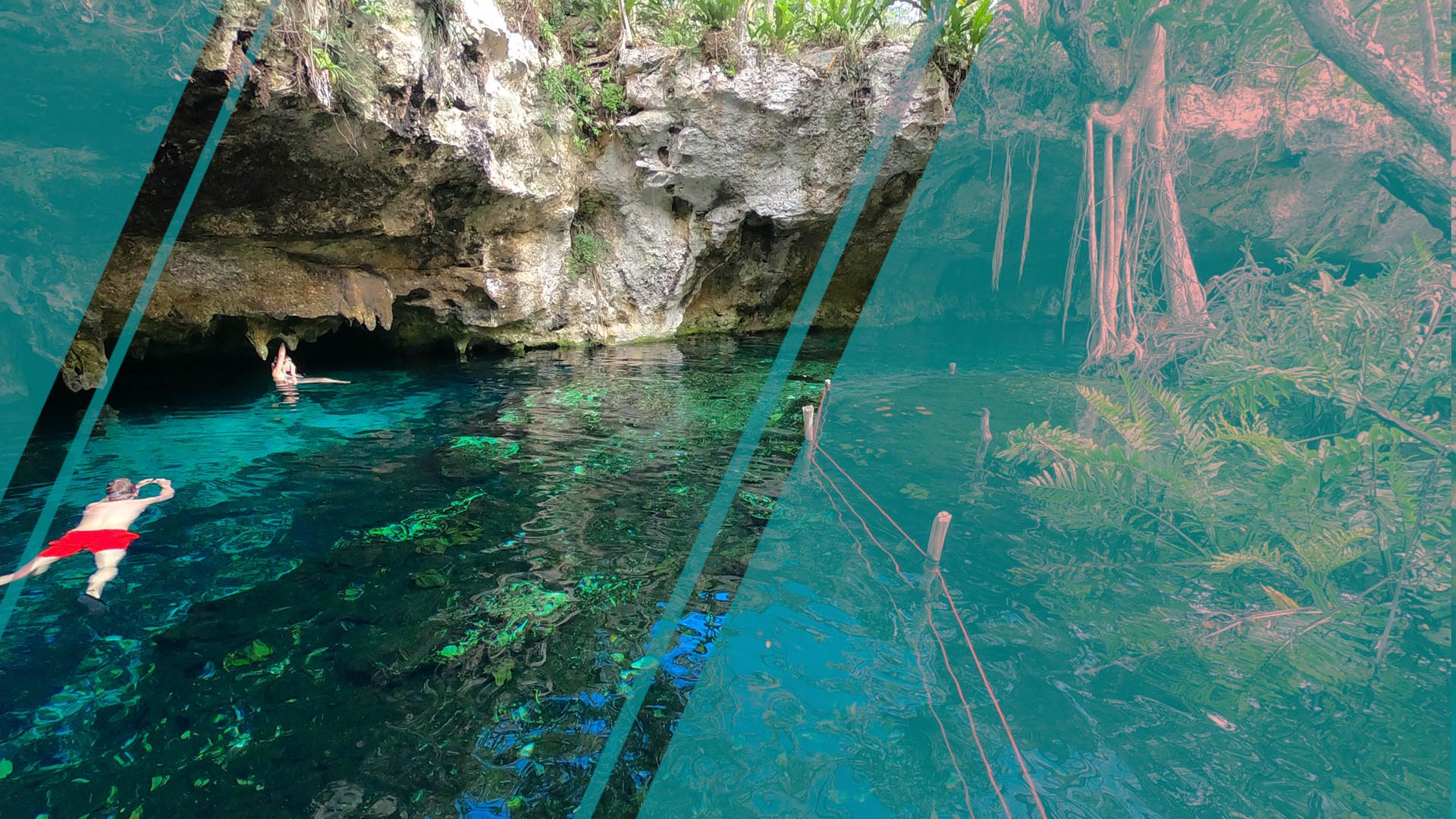 The best cenotes to visit in Tulum