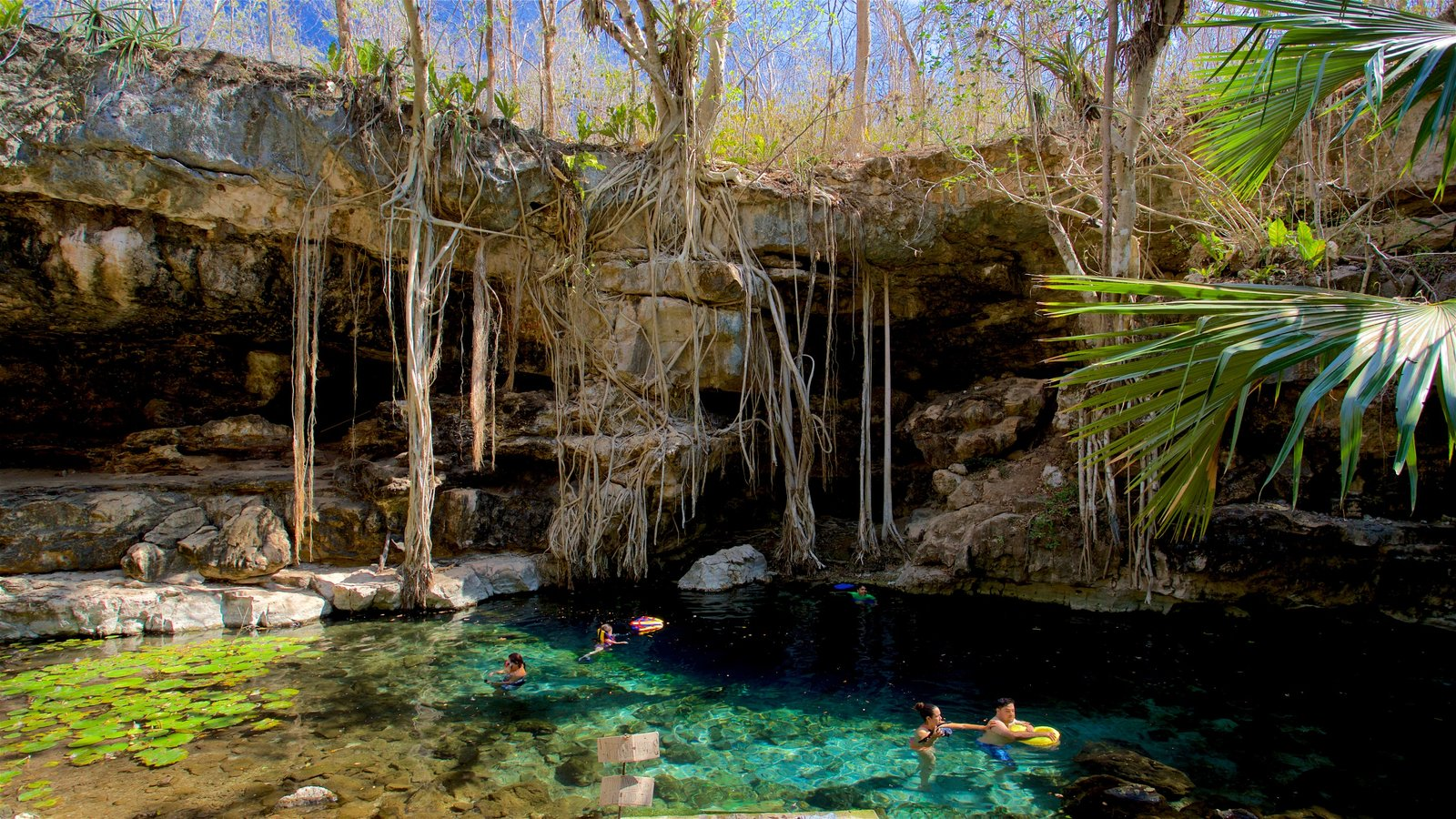 Cenote X-Batún.
