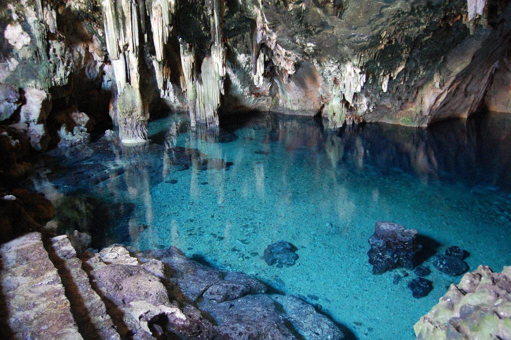 7 Cenotes cerca de Mérida que puedes visitar