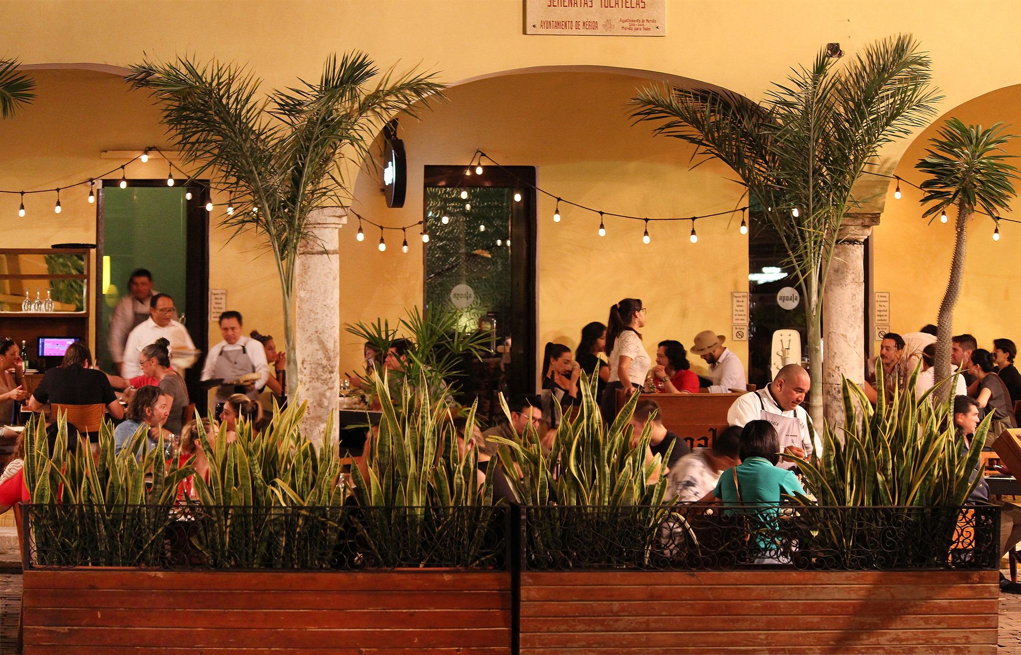 Restaurante Apoala en Santa Lucía