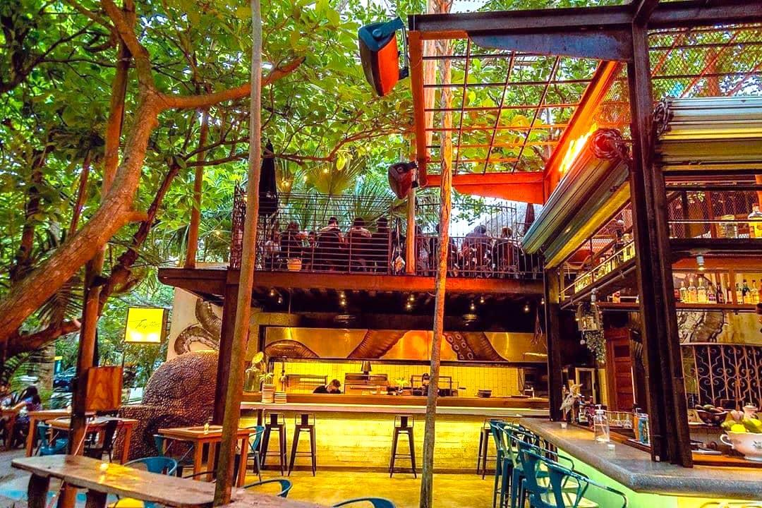 Trujillos Jungle Bar in Playa del Carmen