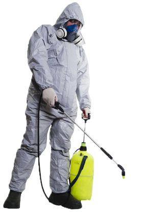 Pest control technician spraying for bugs