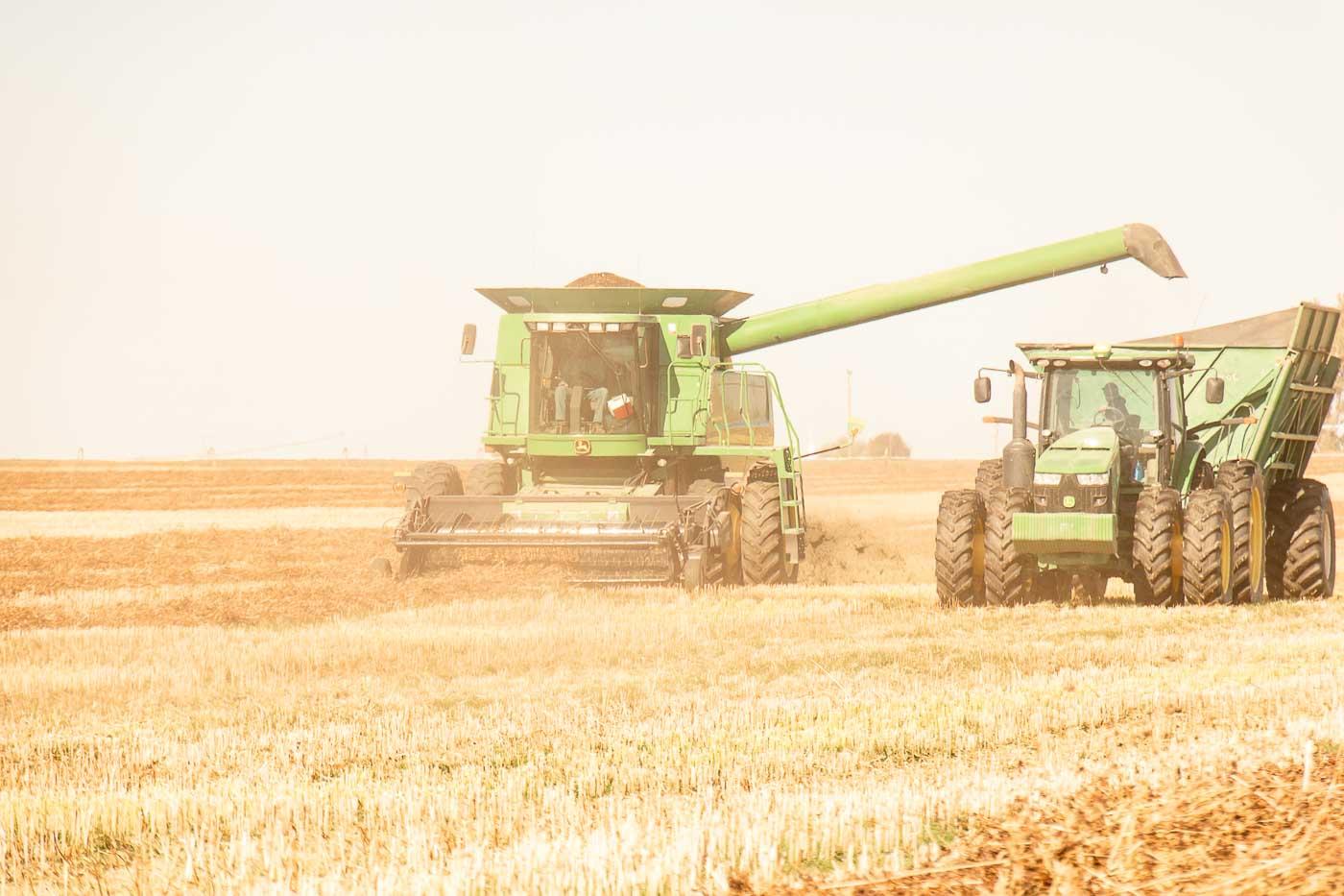 Harvest crew harvesting buckwheat in Columbia Basin Washington.