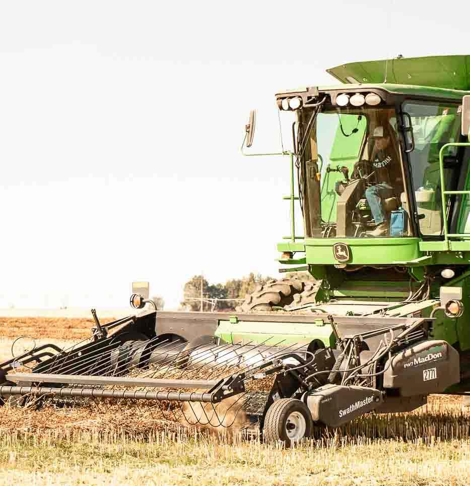 Team member in farm.
