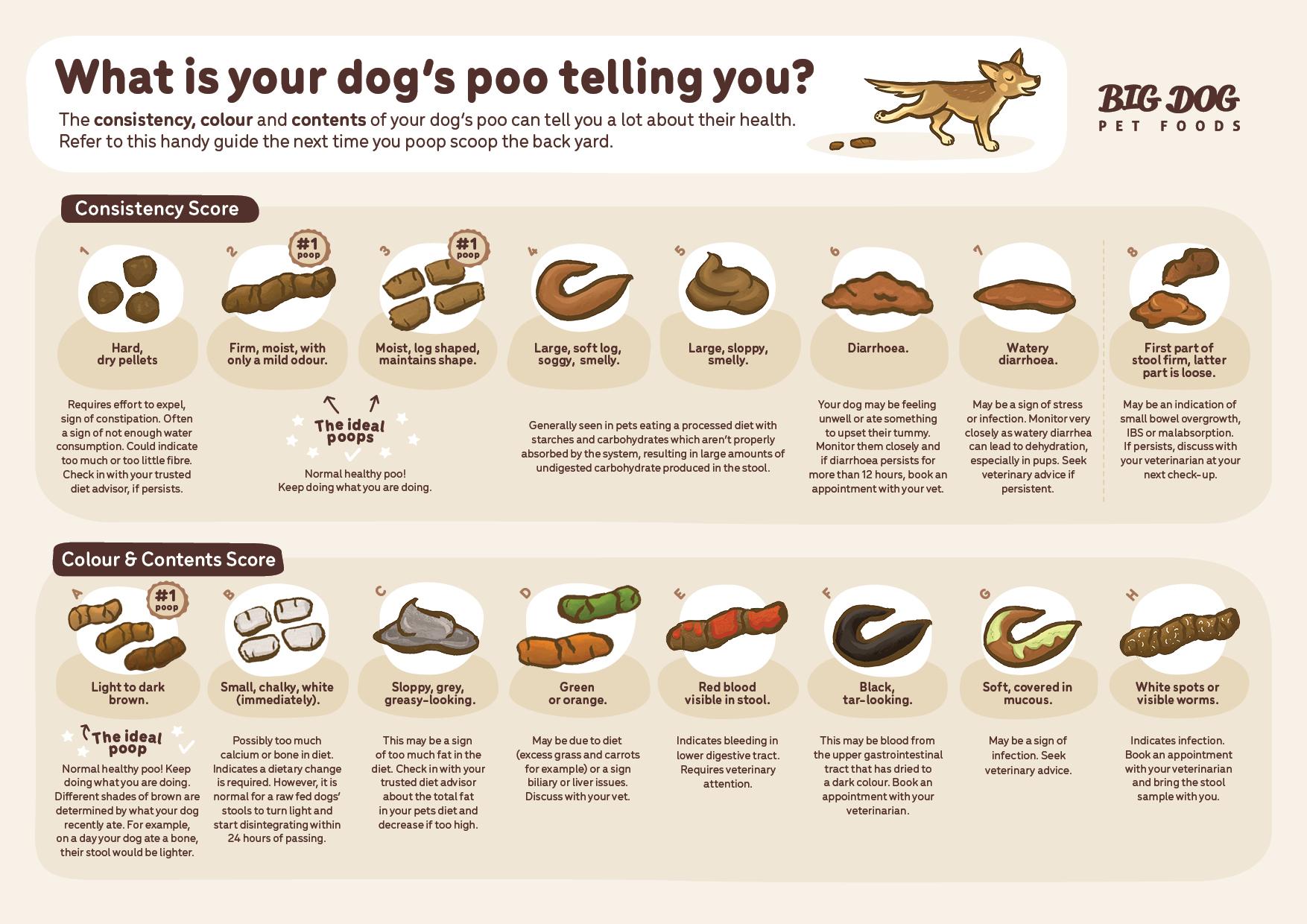 Big Dog Pet Foods Poo Chart