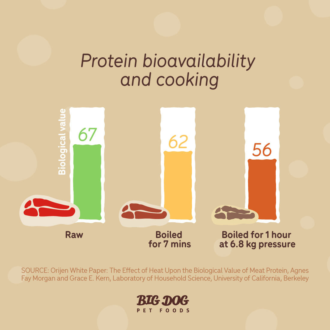 protein bioavailability and cooking in pet foods