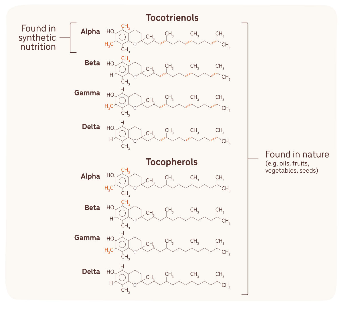 vitamin found in synthetic nutrition versus nature