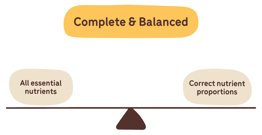 complete and balanced diagram