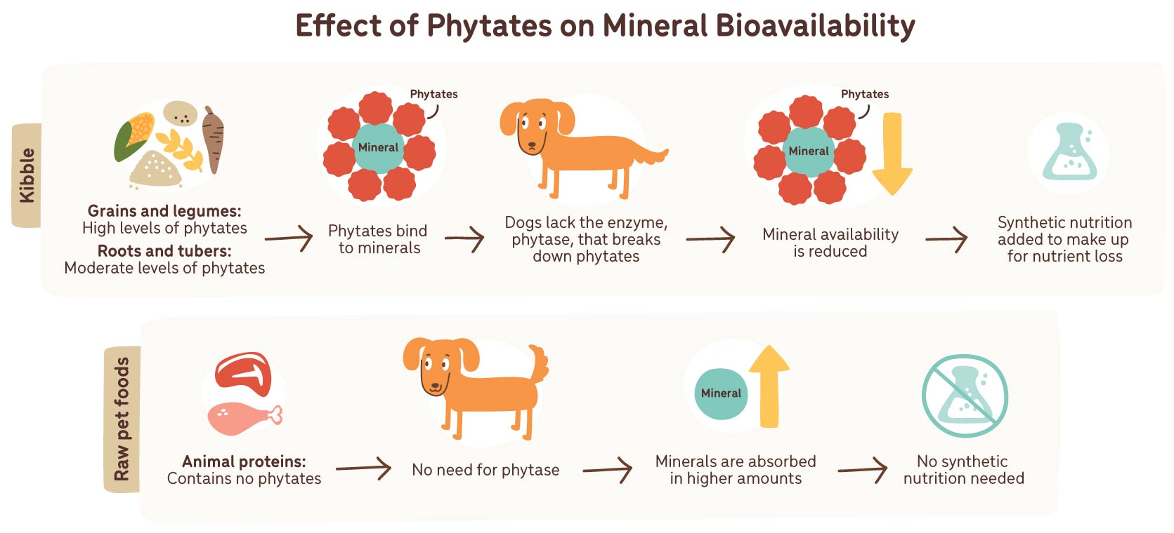 effects of phytates on mineral bioavailability
