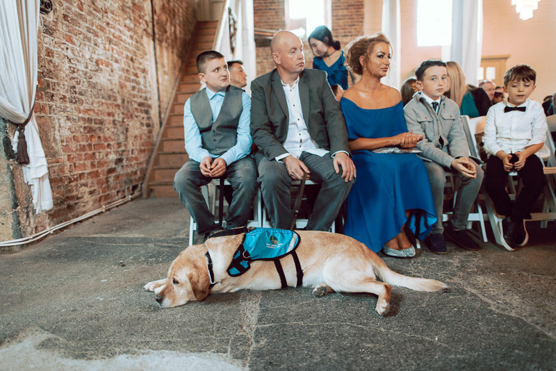 cute-dog-wedding