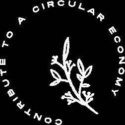 circular economy through design services