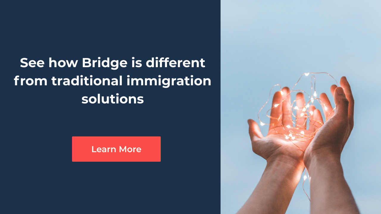 Why Bridge immigration solution