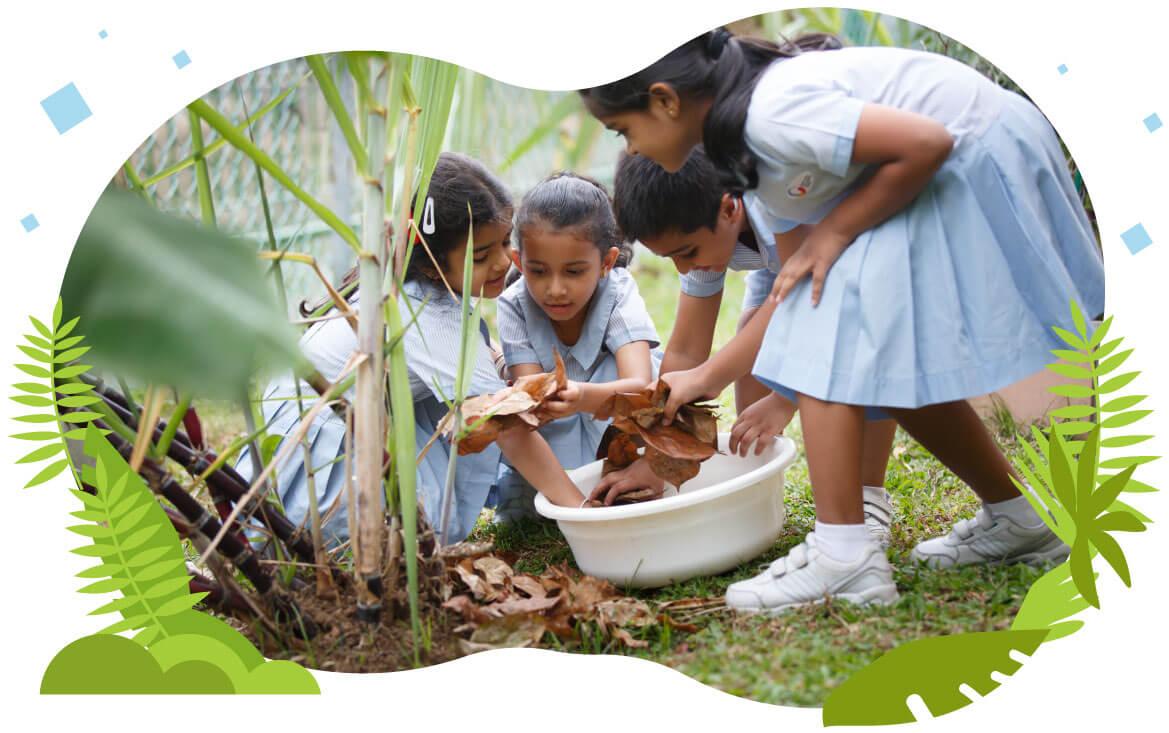 Preschools In Noida