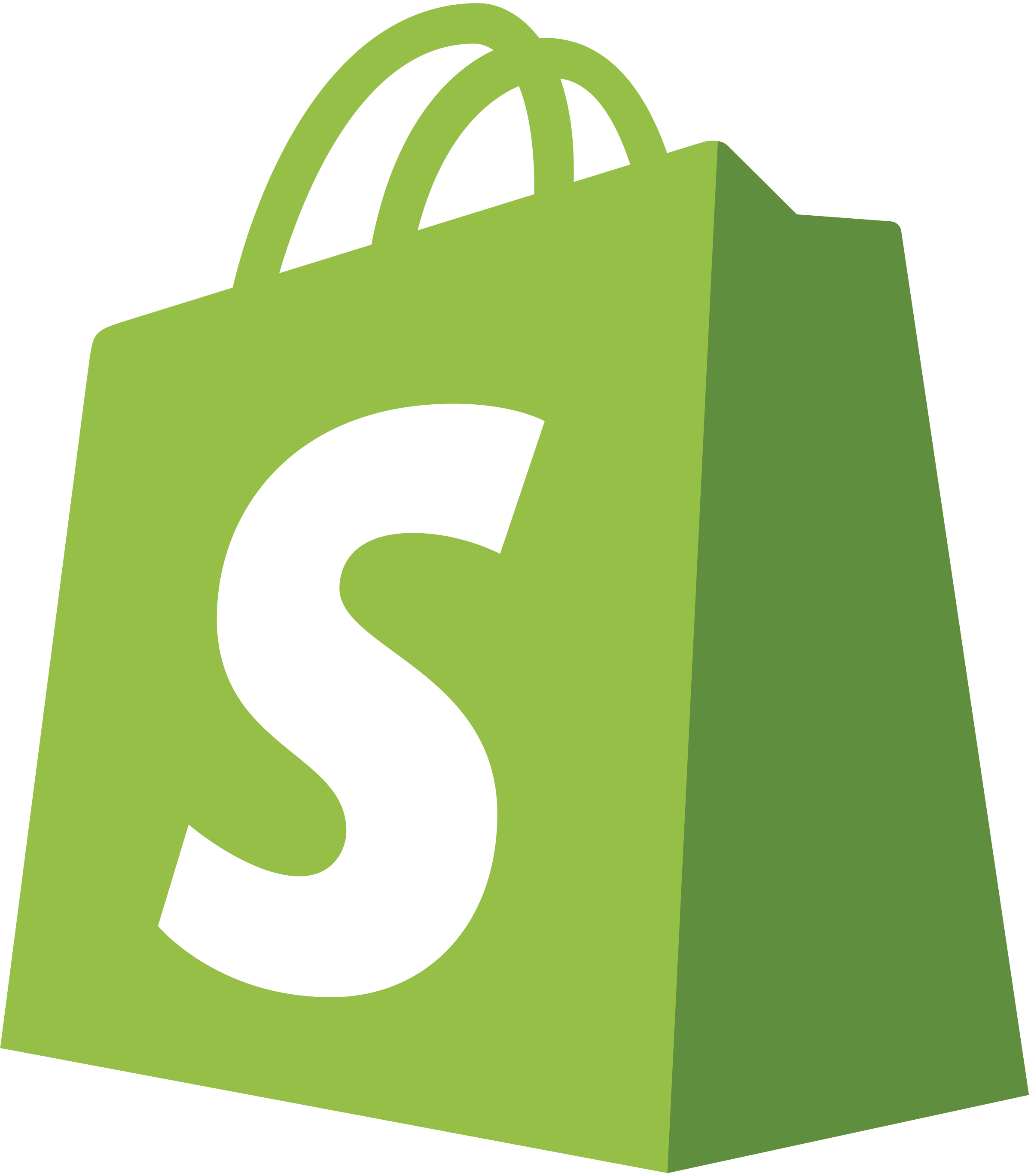 Shopify Partner Developer and Web Design Near Me In Houston, Lufkin and Dallas area