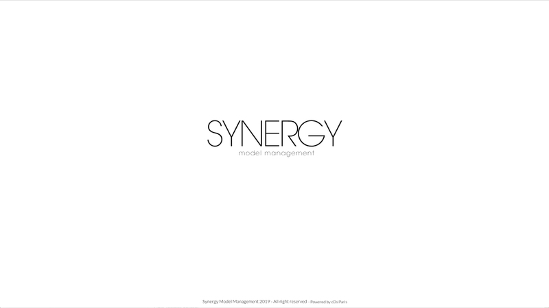 Synergy Modle Management