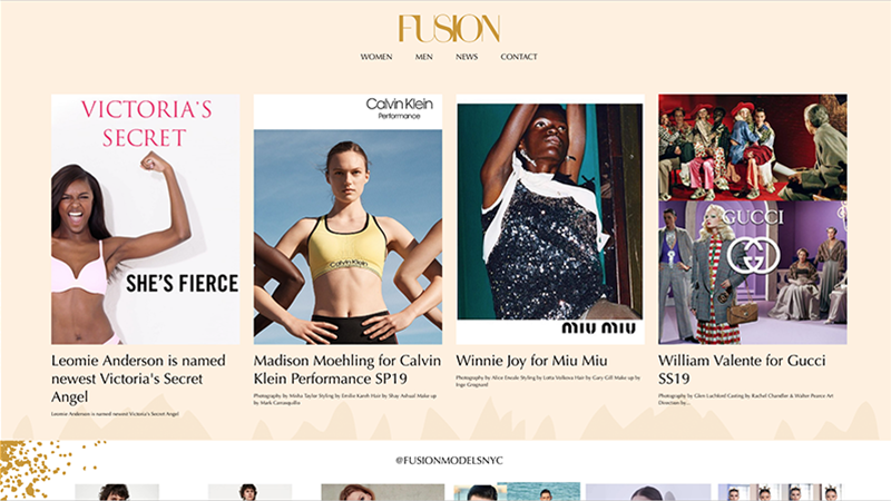 Fusion Models Management