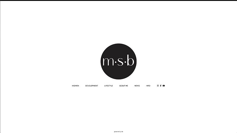 MSB Models