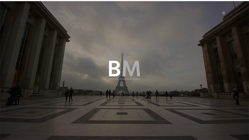 BM Model Management