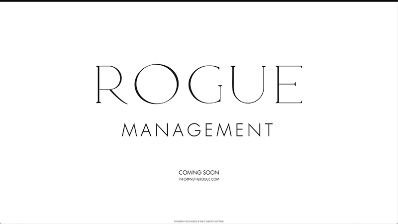 We The Rogue