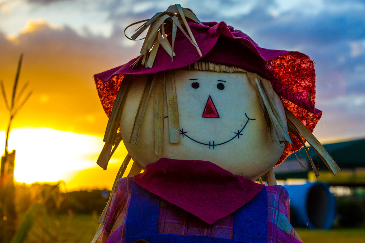 Scarecrow-Making 10/9  6:30PM Workshop