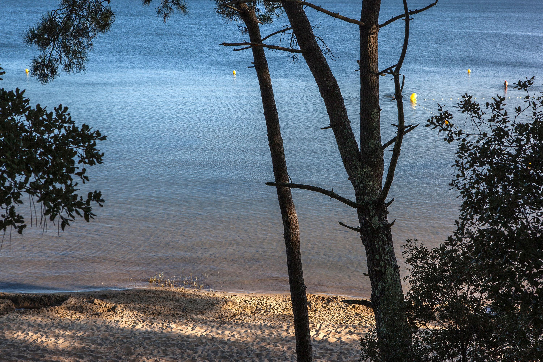 fin de journee en bord de lac