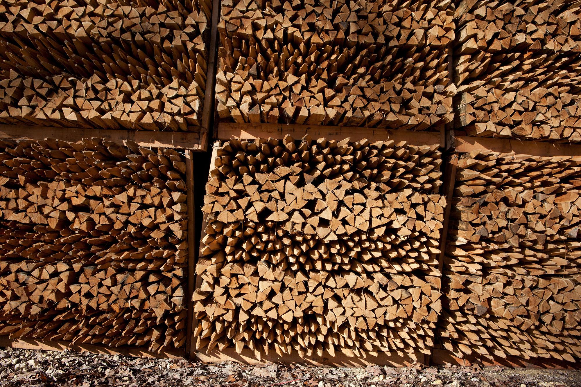 piquets de vignes graphique photographie Château Montrose