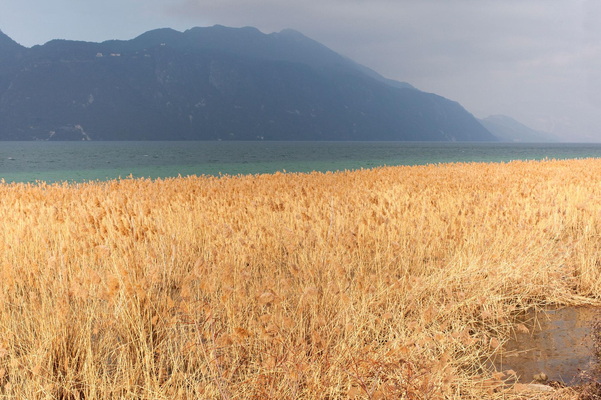 bord de lac Aix les Bains 02